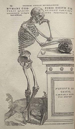 Vesalio : Figura del Renacimiento y padre de la anatomía moderna ...